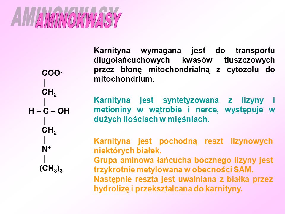 Karnityna wymagana jest do transportu długołańcuchowych kwasów tłuszczowych przez błonę mitochondrialną z cytozolu do mitochondrium.