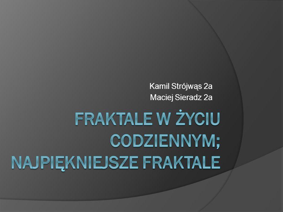 Co to są fraktale. Fraktal to kształt, którego cząstka jest taka sama co całość.