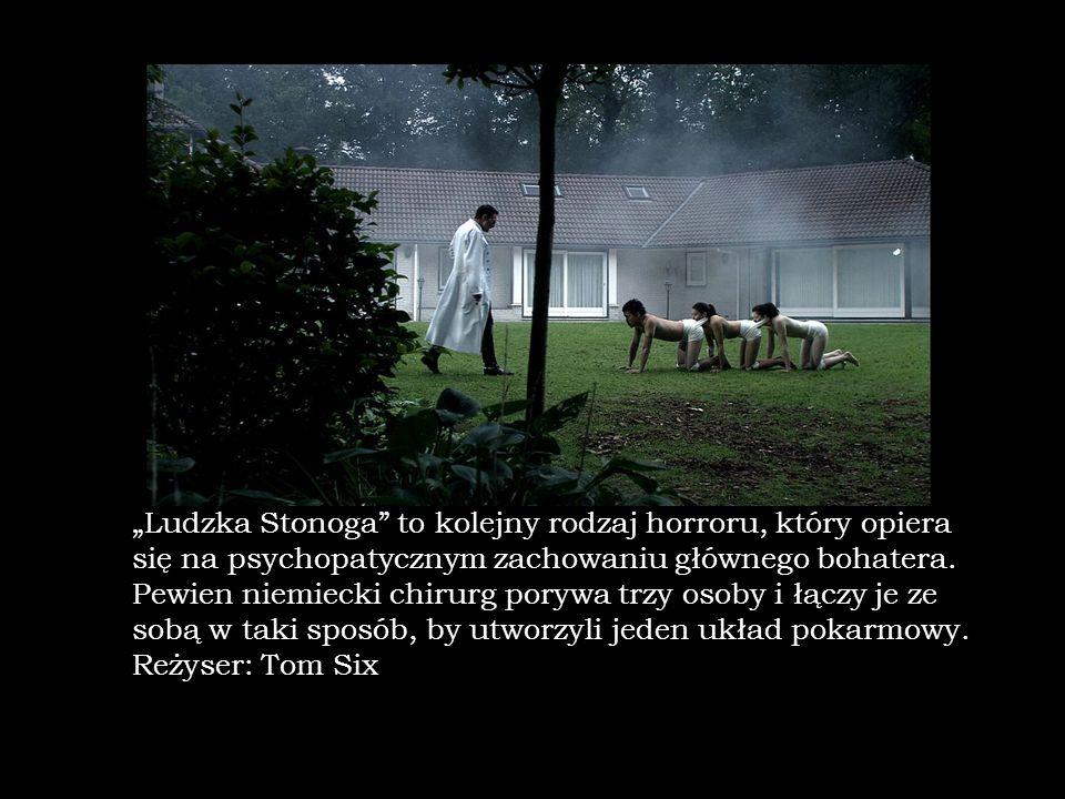 """""""Ludzka Stonoga to kolejny rodzaj horroru, który opiera się na psychopatycznym zachowaniu głównego bohatera."""
