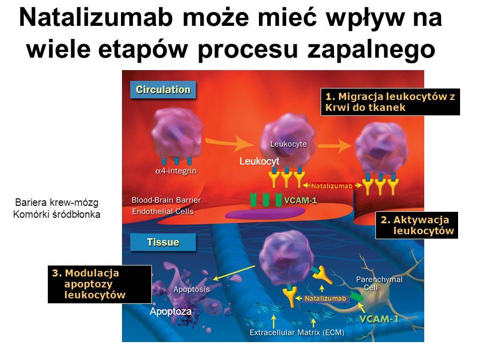 Natalizumab może mieć wpływ na wiele etapów procesu zapalnego 1.
