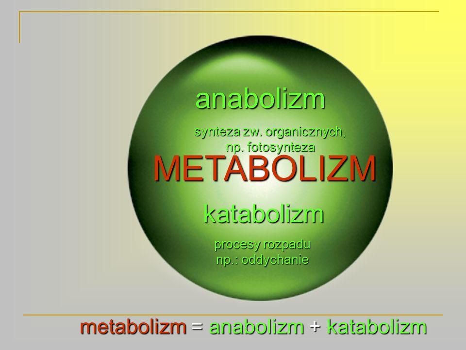 Wydalanie Wszystkie przemiany, zachodzące w komórkach, prowadzą do powstania produktów przemiany materii.