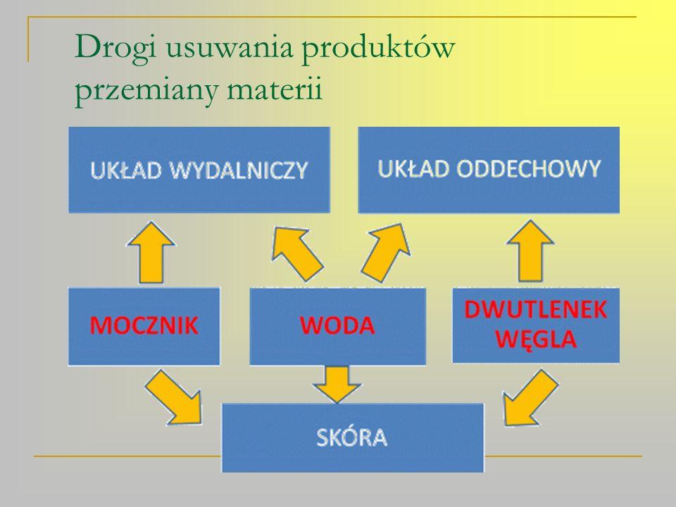 Budowa układu wydalniczego (moczowego) 1.nerka 6.