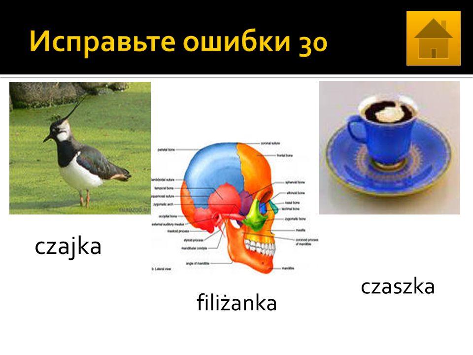 czajka filiżanka сzaszka