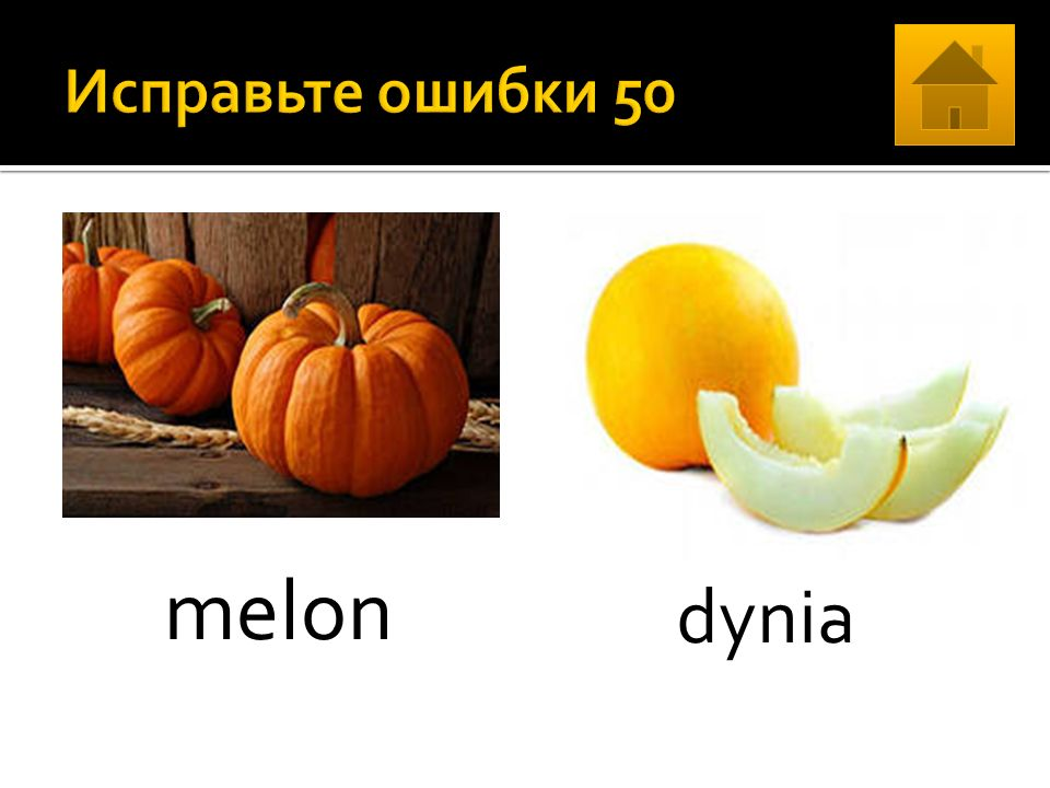 melon dynia