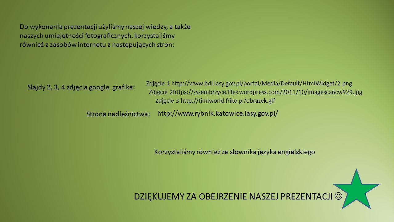 Do wykonania prezentacji użyliśmy naszej wiedzy, a także naszych umiejętności fotograficznych, korzystaliśmy również z zasobów internetu z następujących stron: Slajdy 2, 3, 4 zdjęcia google grafika: Strona nadleśnictwa: DZIĘKUJEMY ZA OBEJRZENIE NASZEJ PREZENTACJI Korzystaliśmy również ze słownika języka angielskiego Zdjęcie 1 http://www.bdl.lasy.gov.pl/portal/Media/Default/HtmlWidget/2.png Zdjęcie 3 http://timiworld.friko.pl/obrazek.gif Zdjęcie 2https://zszembrzyce.files.wordpress.com/2011/10/imagesca6cw929.jpg http://www.rybnik.katowice.lasy.gov.pl/