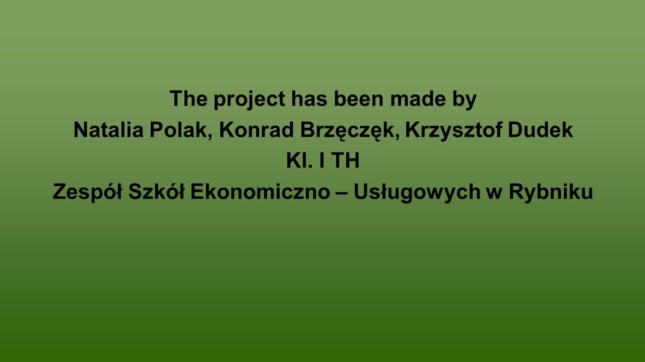The project has been made by Natalia Polak, Konrad Brzęczęk, Krzysztof Dudek Kl.