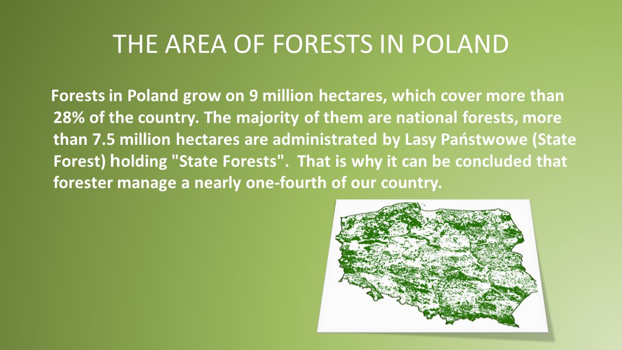 THE AREA OF FORESTS IN EUROPE European forests cover about 32% of the continent.