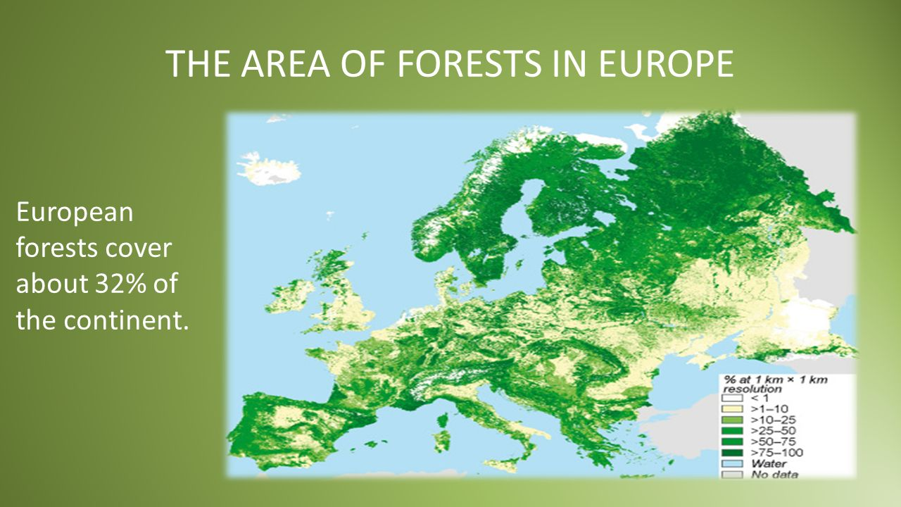 CHANGES OF THE WORLD FOREST AREA PRIMARY FORESTS 8 000 YEARS AGO…AND FORESTS TODAY