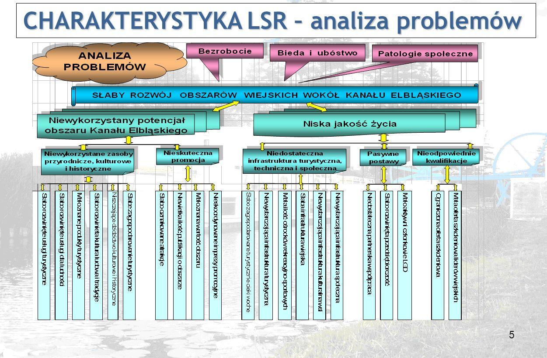 6 CHARAKTERYSTYKA LSR – analiza celów