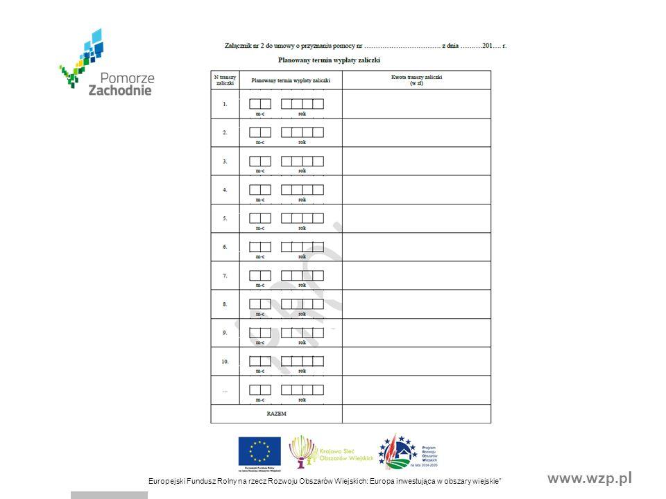 www.wzp.p l Europejski Fundusz Rolny na rzecz Rozwoju Obszarów Wiejskich: Europa inwestująca w obszary wiejskie