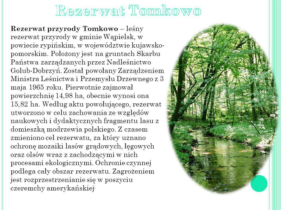Rezerwat przyrody Tomkowo – leśny rezerwat przyrody w gminie Wąpielsk, w powiecie rypińskim, w województwie kujawsko- pomorskim. Położony jest na grun