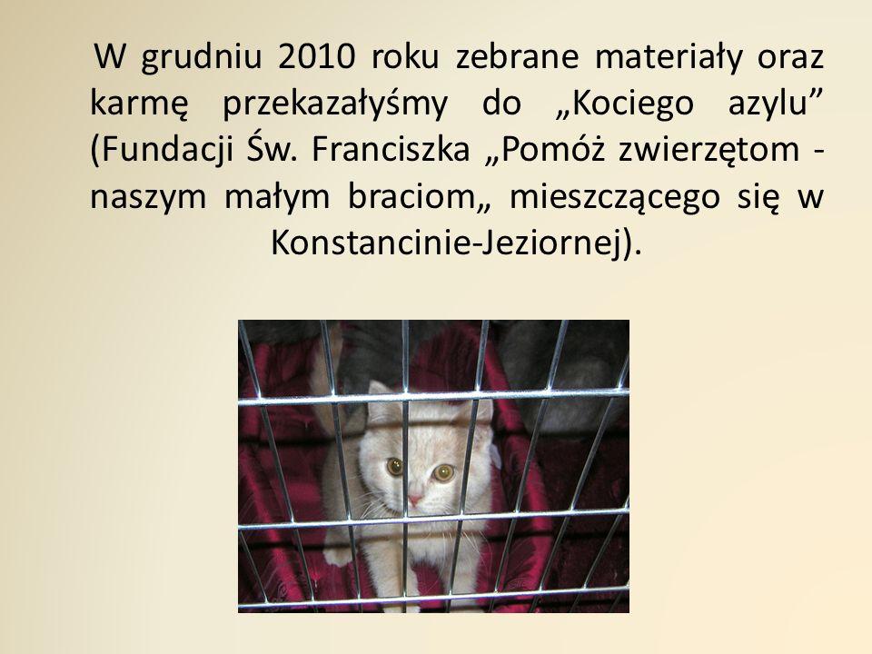 """W grudniu 2010 roku zebrane materiały oraz karmę przekazałyśmy do """"Kociego azylu (Fundacji Św."""