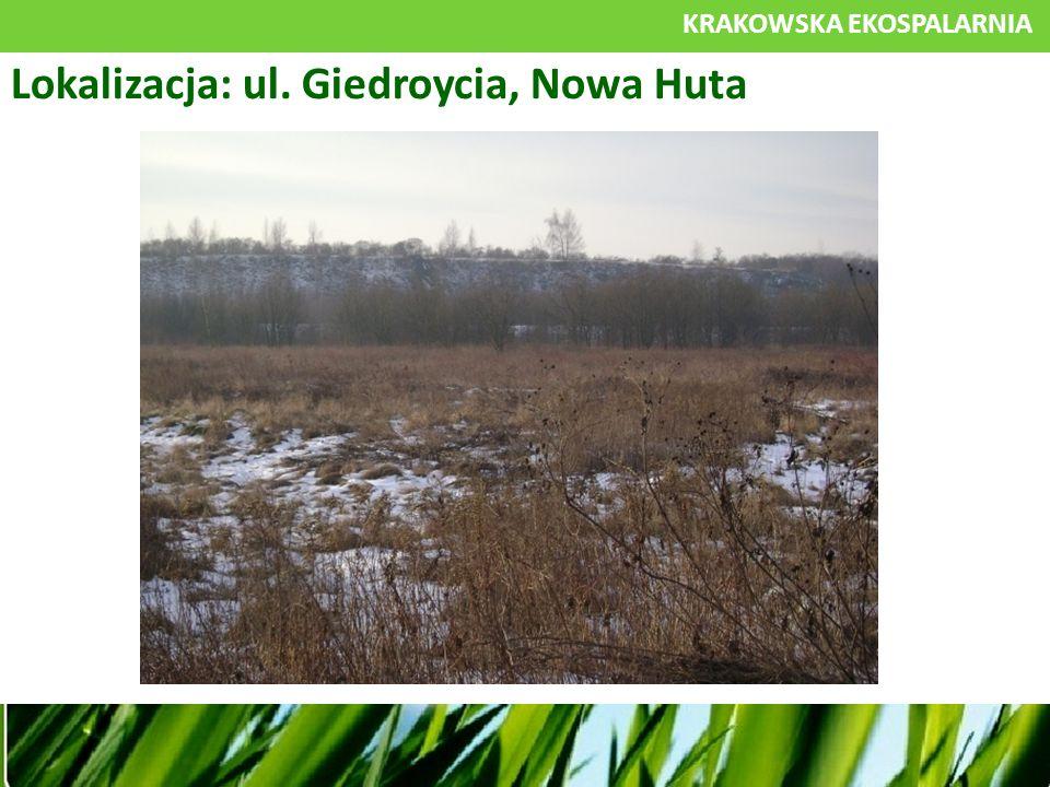 KRAKOWSKA EKOSPALARNIA Lokalizacja: ul. Giedroycia, Nowa Huta