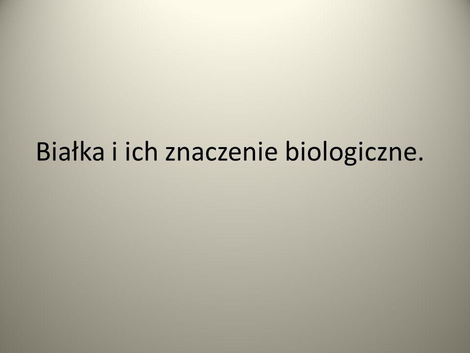 Białka i ich znaczenie biologiczne.