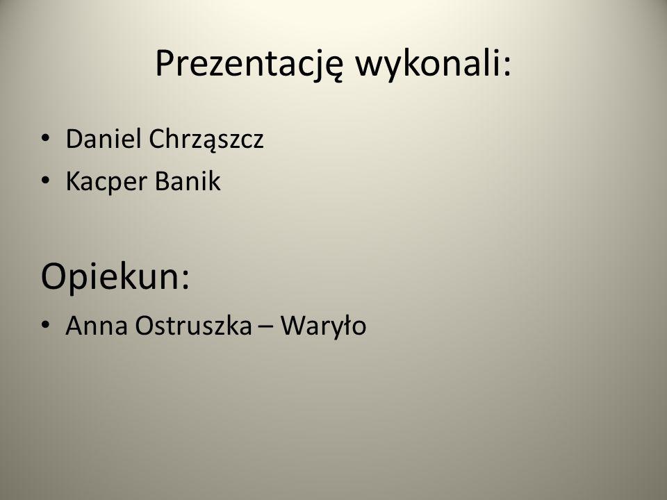 Prezentację wykonali: Daniel Chrząszcz Kacper Banik Opiekun: Anna Ostruszka – Waryło