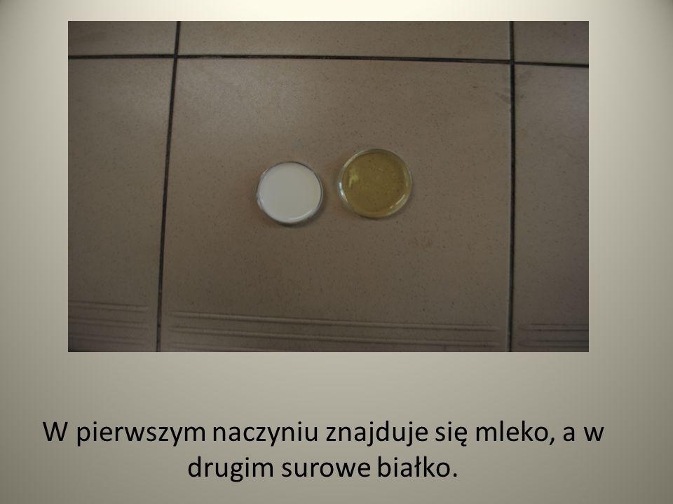 W pierwszym naczyniu znajduje się mleko, a w drugim surowe białko.