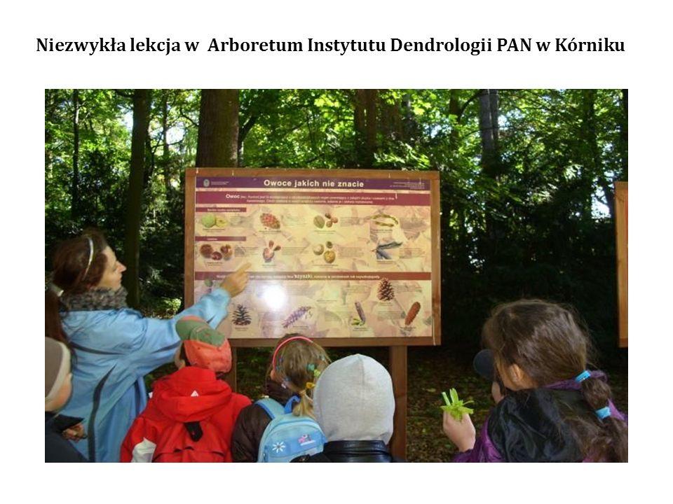 Niezwykła lekcja w Arboretum Instytutu Dendrologii PAN w Kórniku