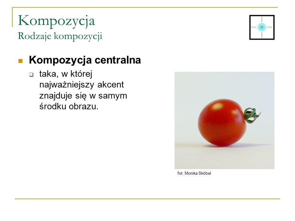 Kompozycja Rodzaje kompozycji Kompozycja centralna  taka, w której najważniejszy akcent znajduje się w samym środku obrazu. fot. Monika Skóbel