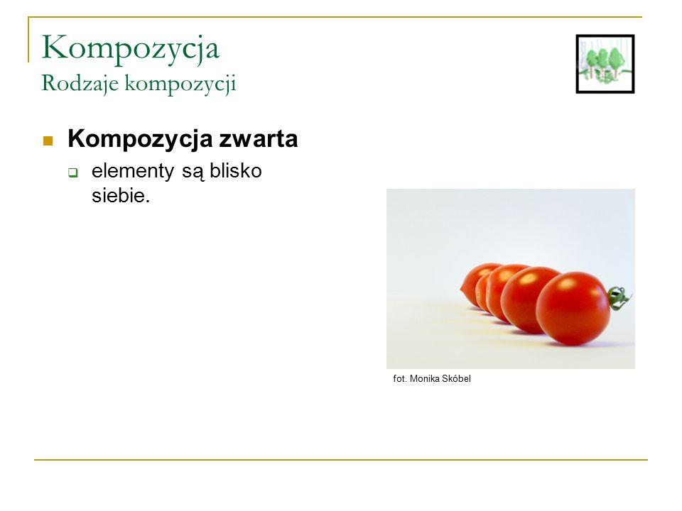 Kompozycja Rodzaje kompozycji Kompozycja zwarta  elementy są blisko siebie. fot. Monika Skóbel