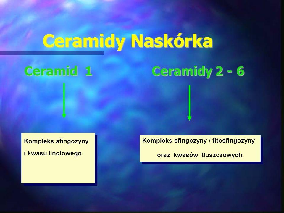 Ceramidy Naskórka Ceramid 1 Ceramidy 2 - 6 Kompleks sfingozyny i kwasu linolowego Kompleks sfingozyny / fitosfingozyny oraz kwasów tłuszczowych Komple