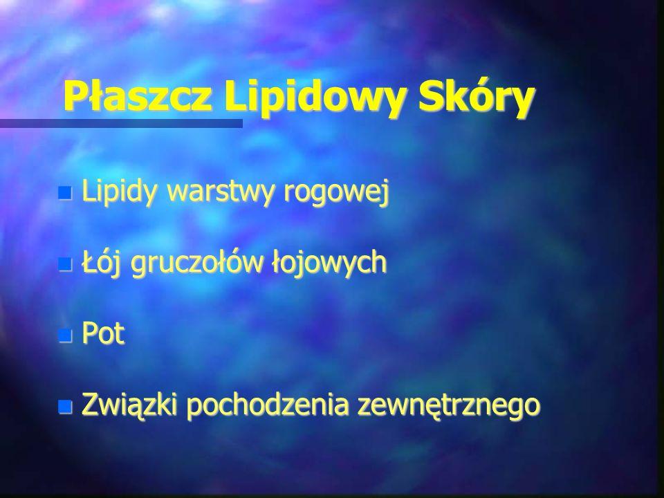 Płaszcz Lipidowy Skóry Lipidy warstwy rogowej Lipidy warstwy rogowej Łój gruczołów łojowych Łój gruczołów łojowych Pot Pot Związki pochodzenia zewnętr