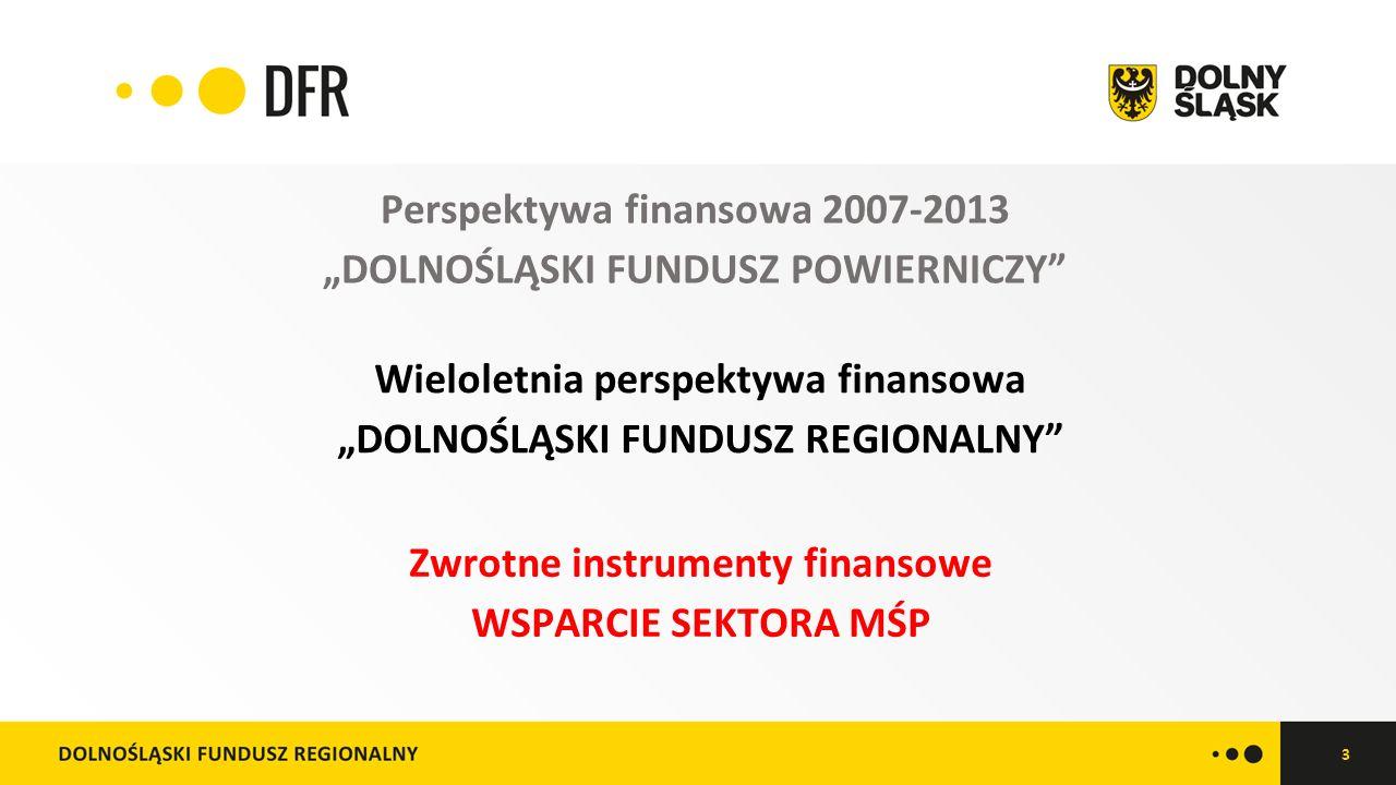 """3 Perspektywa finansowa 2007-2013 """"DOLNOŚLĄSKI FUNDUSZ POWIERNICZY Wieloletnia perspektywa finansowa """"DOLNOŚLĄSKI FUNDUSZ REGIONALNY Zwrotne instrumenty finansowe WSPARCIE SEKTORA MŚP"""