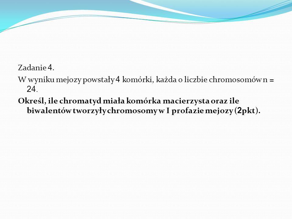 Zadanie 4.W wyniku mejozy powstały 4 komórki, każda o liczbie chromosomów n = 24.