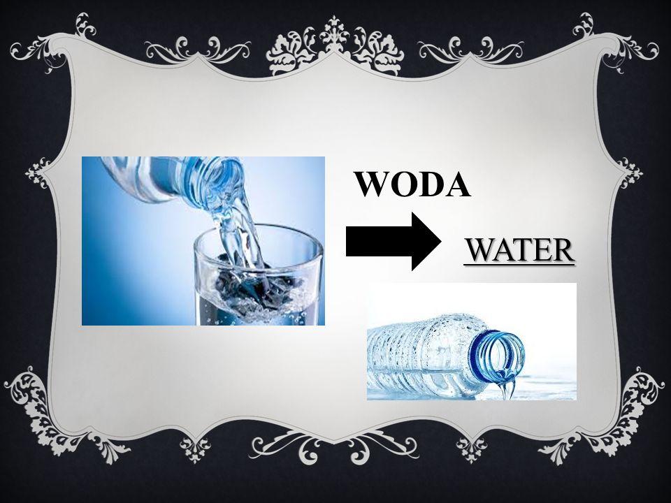 WODA WATER