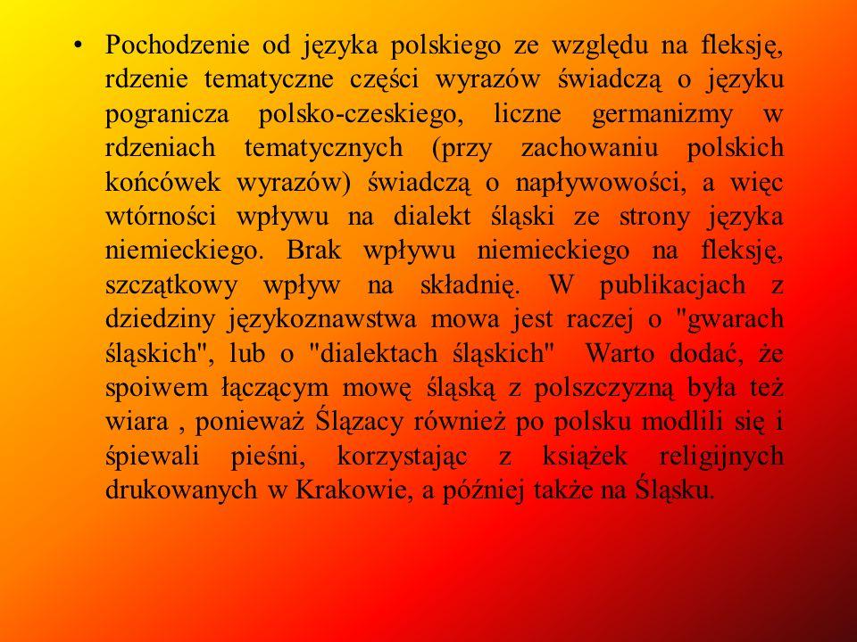 Pochodzenie od języka polskiego ze względu na fleksję, rdzenie tematyczne części wyrazów świadczą o języku pogranicza polsko-czeskiego, liczne germanizmy w rdzeniach tematycznych (przy zachowaniu polskich końcówek wyrazów) świadczą o napływowości, a więc wtórności wpływu na dialekt śląski ze strony języka niemieckiego.