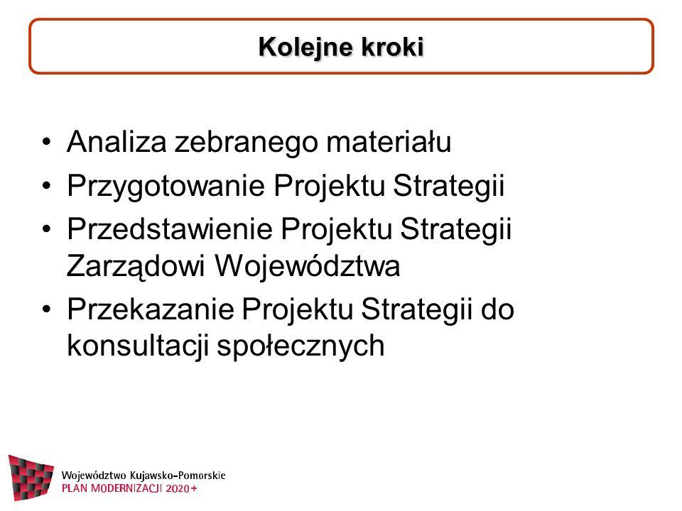 Kolejne kroki Analiza zebranego materiału Przygotowanie Projektu Strategii Przedstawienie Projektu Strategii Zarządowi Województwa Przekazanie Projektu Strategii do konsultacji społecznych