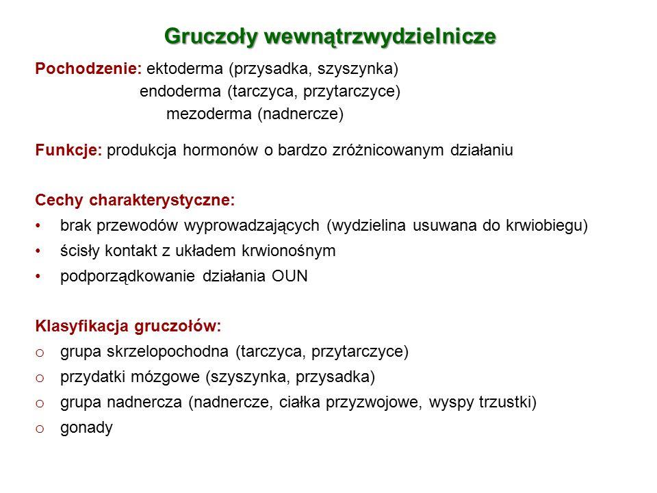 Gruczoły wewnątrzwydzielnicze Pochodzenie: ektoderma (przysadka, szyszynka) endoderma (tarczyca, przytarczyce) mezoderma (nadnercze) Funkcje: produkcj