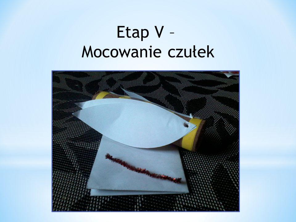 Etap V – Mocowanie czułek