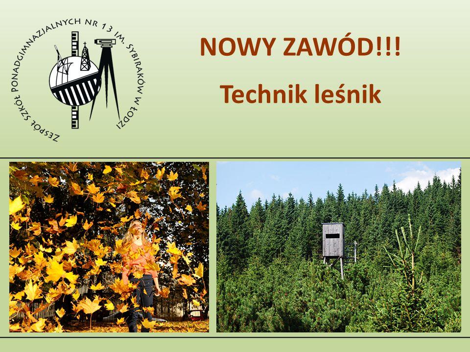NOWY ZAWÓD!!! Technik leśnik