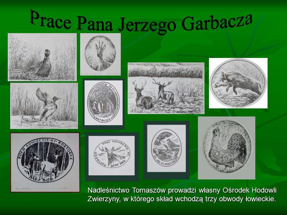 Nadleśnictwo Tomaszów prowadzi własny Ośrodek Hodowli Zwierzyny, w którego skład wchodzą trzy obwody łowieckie.