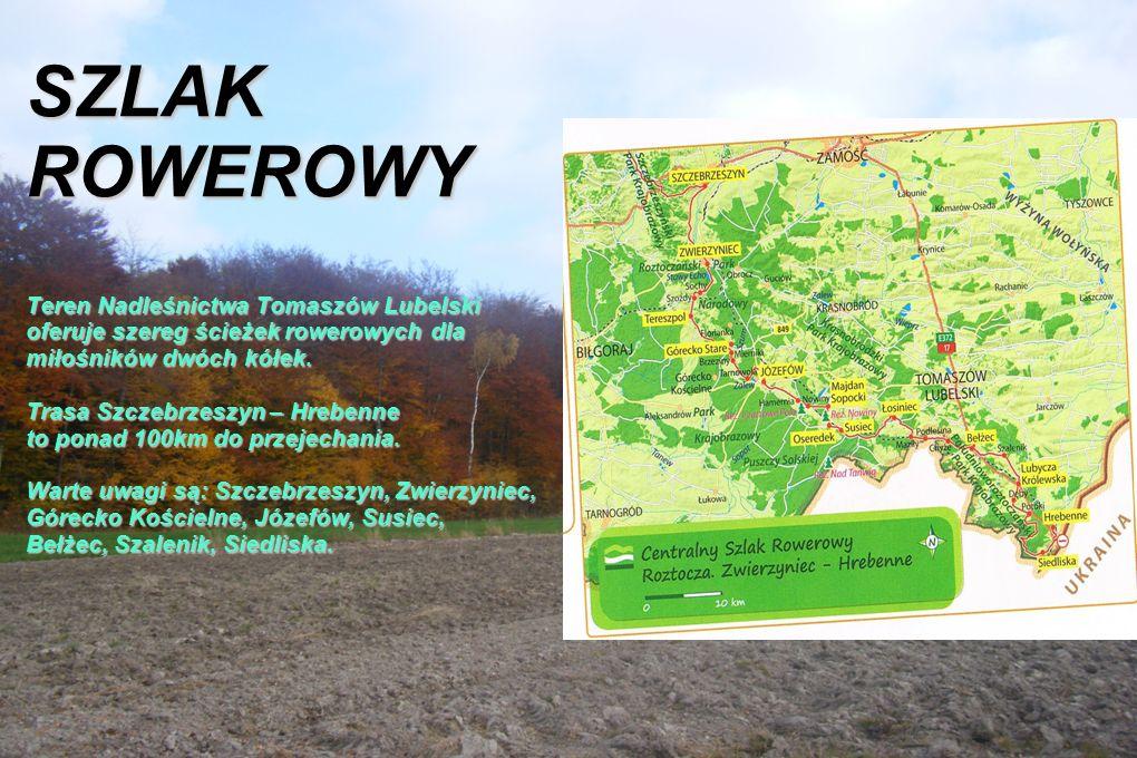SZLAK ROWEROWY Teren Nadleśnictwa Tomaszów Lubelski oferuje szereg ścieżek rowerowych dla miłośników dwóch kółek.