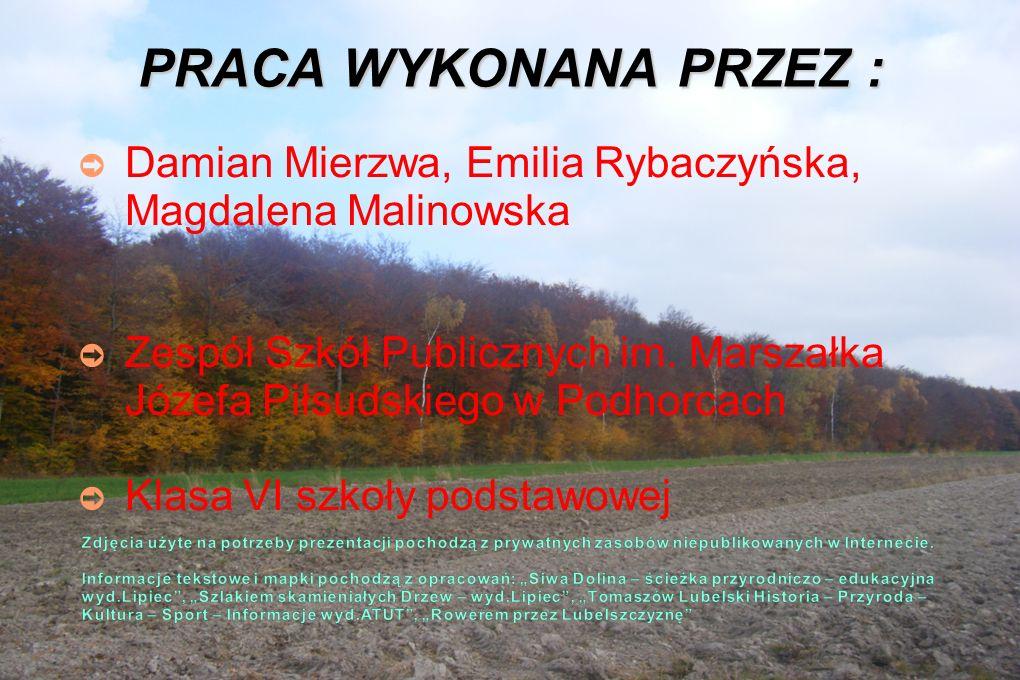 PRACA WYKONANA PRZEZ : ➲ Damian Mierzwa, Emilia Rybaczyńska, Magdalena Malinowska ➲ Zespół Szkół Publicznych im.