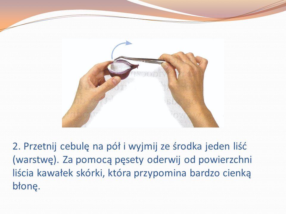 2. Przetnij cebulę na pół i wyjmij ze środka jeden liść (warstwę).