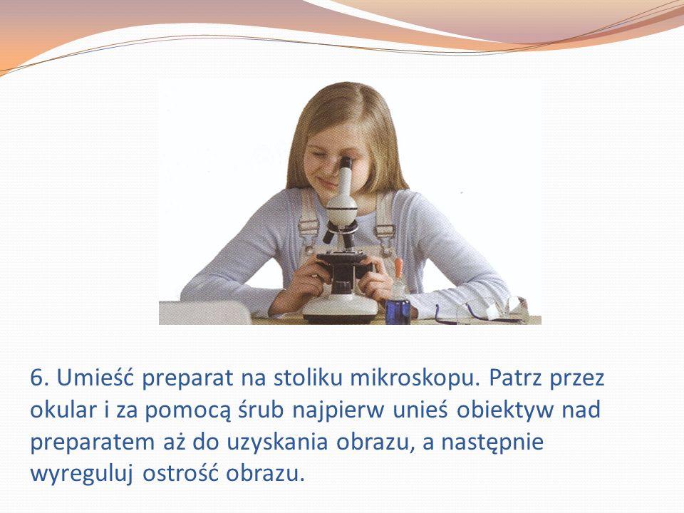 6.Umieść preparat na stoliku mikroskopu.