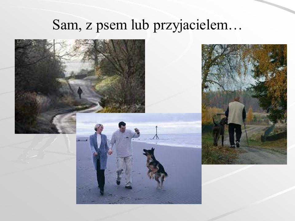 Sam, z psem lub przyjacielem…