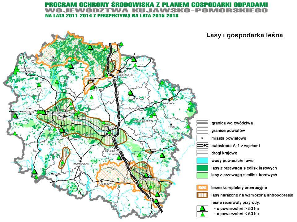 Lasy i gospodarka leśna