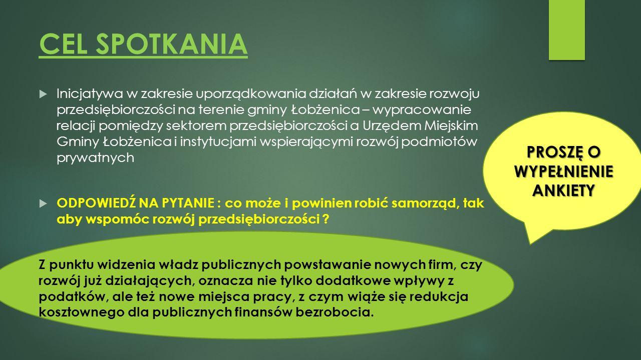 CEL SPOTKANIA  Inicjatywa w zakresie uporządkowania działań w zakresie rozwoju przedsiębiorczości na terenie gminy Łobżenica – wypracowanie relacji p