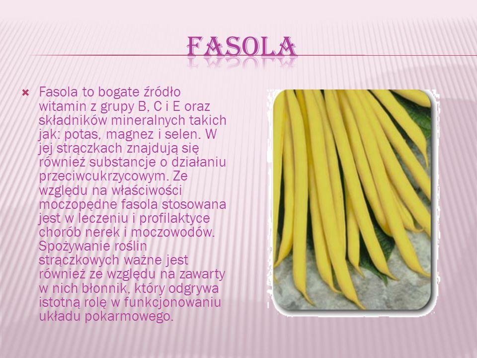  Fasola to bogate źródło witamin z grupy B, C i E oraz składników mineralnych takich jak: potas, magnez i selen.