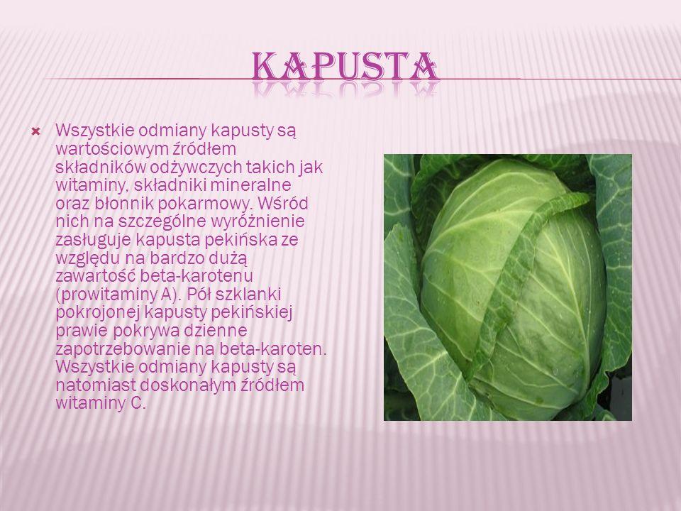  Wszystkie odmiany kapusty są wartościowym źródłem składników odżywczych takich jak witaminy, składniki mineralne oraz błonnik pokarmowy.