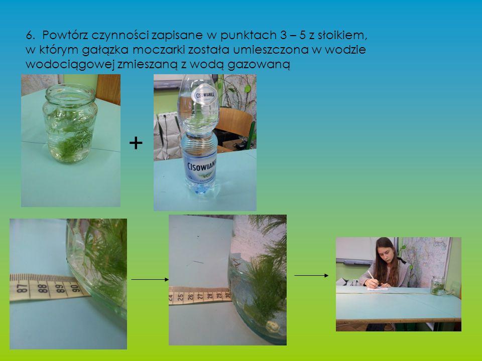 6. Powtórz czynności zapisane w punktach 3 – 5 z słoikiem, w którym gałązka moczarki została umieszczona w wodzie wodociągowej zmieszaną z wodą gazowa