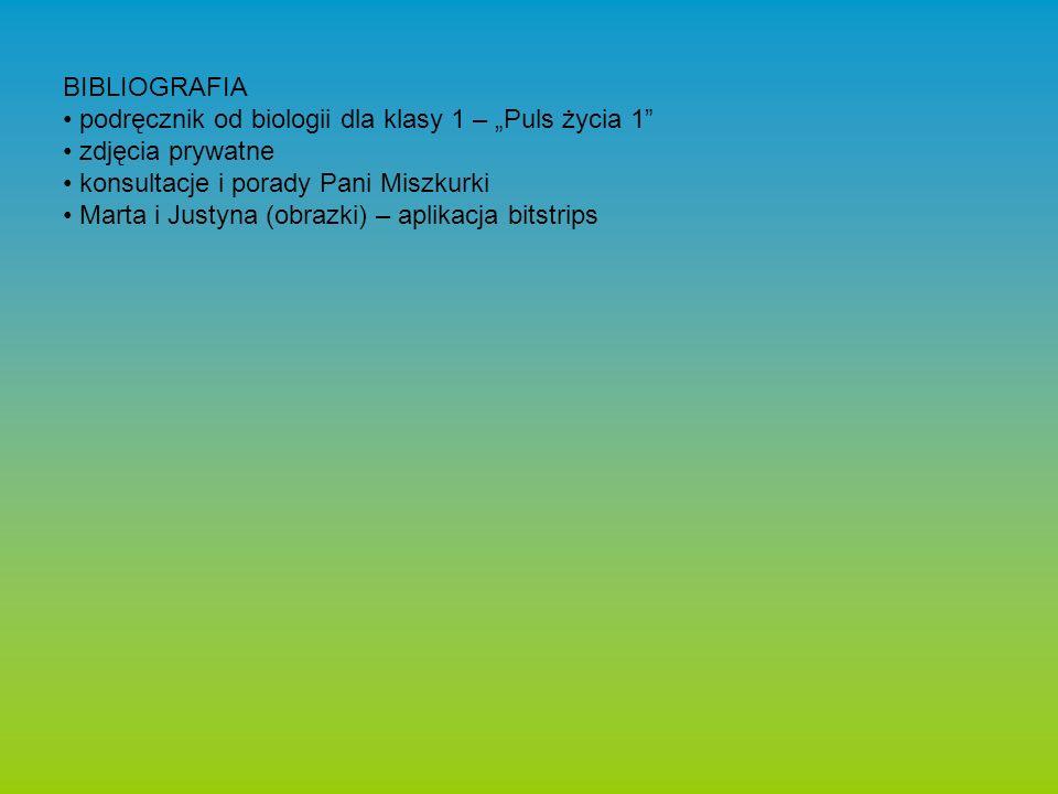 """BIBLIOGRAFIA podręcznik od biologii dla klasy 1 – """"Puls życia 1 zdjęcia prywatne konsultacje i porady Pani Miszkurki Marta i Justyna (obrazki) – aplikacja bitstrips"""