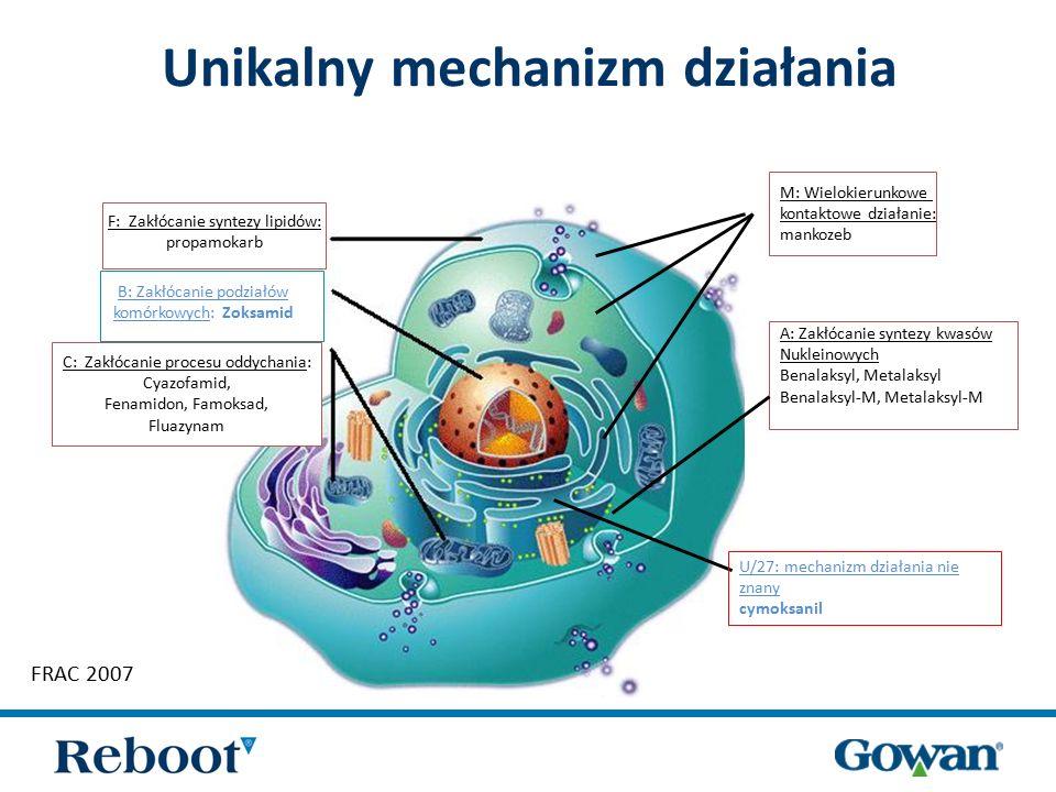 Reboot 66WG  Fungicyd Reboot 66WG zawiera: 33% zoksamidu + 33% cymoksanilu  Formulacja WG: granule do sporządzenia zawiesiny wodnej, środek nie pyli się podczas odmierzania  Dwie różniące się mechanizmem działania substancje aktywne:  zoksamid – powierzchniowo – kontaktowy, cymoksanil – wgłębny  cymoksanil – hamuje wzrost grzybni oraz produkcję nowych zarodników zoksamid – zapobiega rozwojowi zoospor  Unikalny mechanizm działania zoksamidu – zakłócanie podziałów komórkowych  Działanie zapobiegawcze i interwencyjne  Substancje zakwalifikowane przez FRAC do grupy niskiego ryzyka powstania odporności  Możliwość mieszania z innymi substancjami aktywnymi  Skuteczny do ochrony zapobiegawczej, polecany do 6 zabiegów w sezonie  Krótki okres karencji – 7 dni