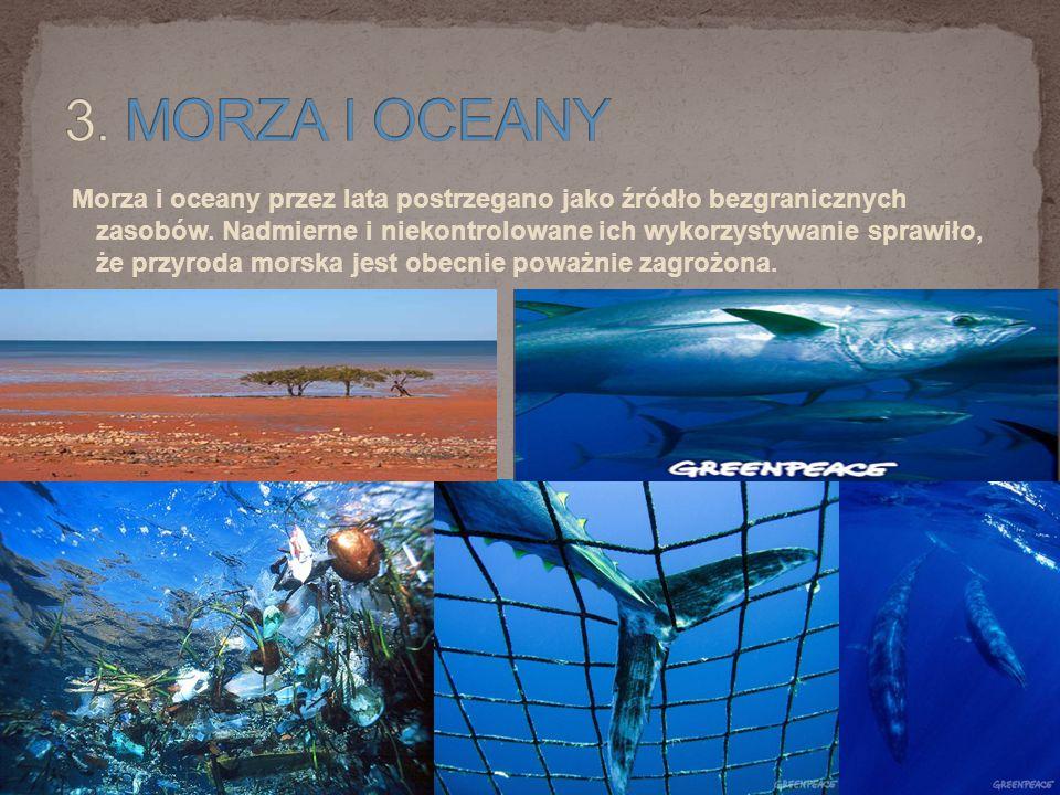 Morza i oceany przez lata postrzegano jako źródło bezgranicznych zasobów.
