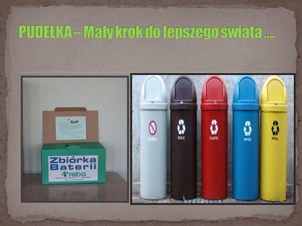 Razem możemy zrobić wiele zaczęłyśmy : W szkole zbierać zużyte baterie Stworzyłyśmy pojemniki do segregacji śmieci Nakłaniałyśmy znajomych, aby nie wyrzucali śmieci na ulicę Ogłaszałyśmy akcje wśród rówieśników PAMIĘTAJCIE .
