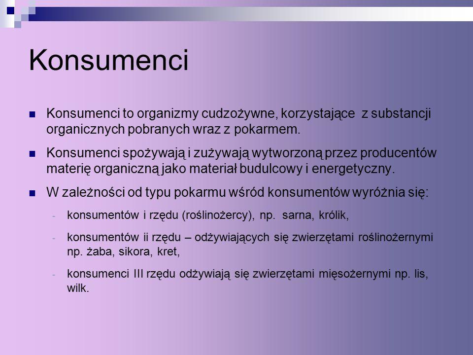 Konsumenci Konsumenci to organizmy cudzożywne, korzystające z substancji organicznych pobranych wraz z pokarmem.