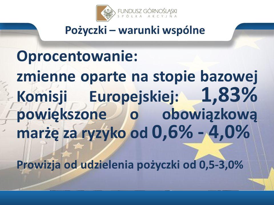 Śląski Funduszu Pożyczkowy Projekt współfinansowany ze środków Unii Europejskiej z Europejskiego Funduszu Rozwoju Regionalnego w ramach Regionalnego Programu Operacyjnego Województwa Śląskiego na lata 2007-2013 10